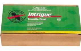 intrigue termite dust