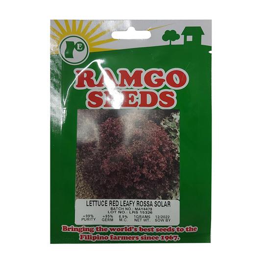 Lettuce Red Leafy Rossa Solar 1g